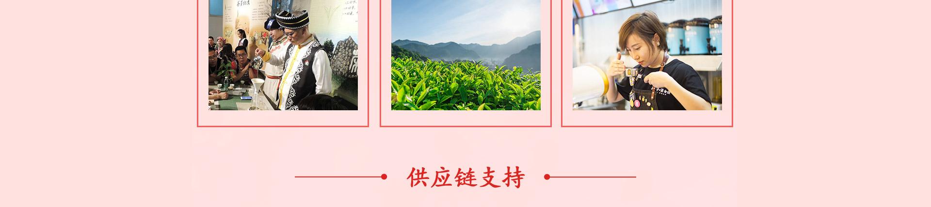 茶饮供应链支持